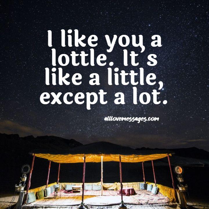62 I Like You Alot Quote
