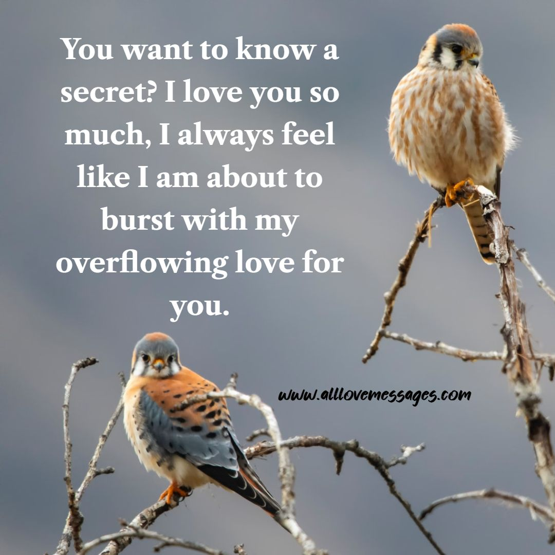 43 I Love You So Much Quotes