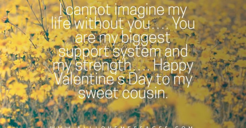 14 Happy Valentines Day Cousin Quotes
